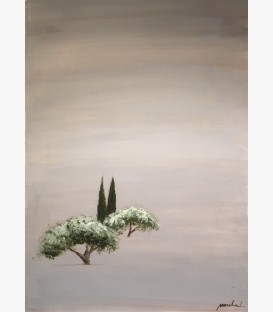 Two olive trees in Provence