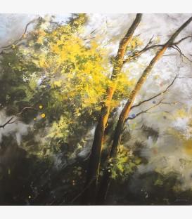 Coucher de soleil dans le Luberon