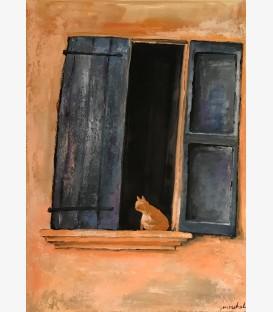 Chat roux en Provence