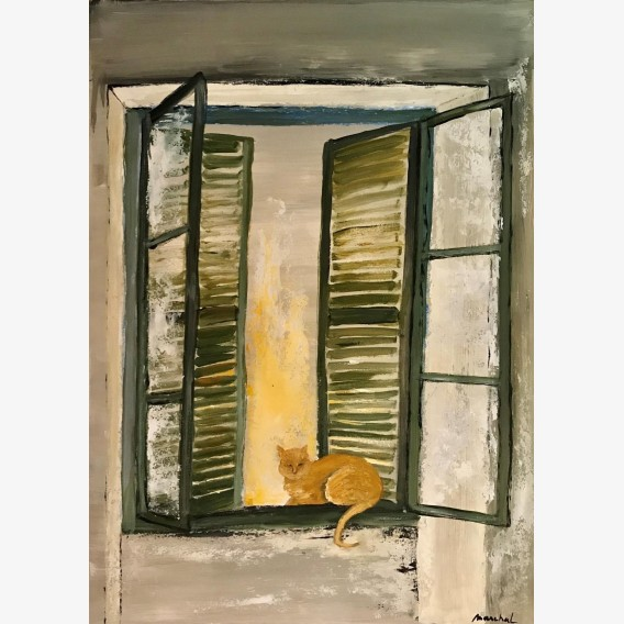 Cat with the shutters